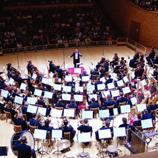 An aeiral photo of the Mariinky orchestra performing in a concert hall with music stands, sheet music, and audience in their seats.
