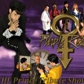 "Image collage of the performers of Purple Reign on a purple background with the gold Purple Reign logo and text that reads ""THE Prince Tribute Show."""