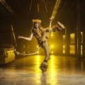 Man in lion costume doing a high kick in a room with a yellow light behind him.